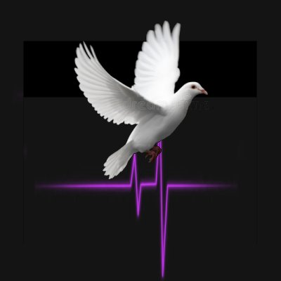 BlastChristian's Music Profile | Last.fm